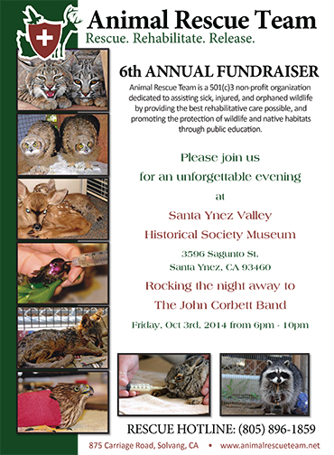 ART Fundraiser Poster